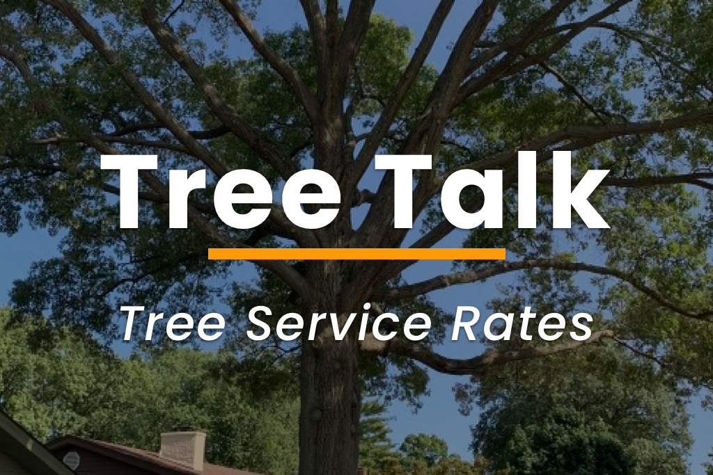Tree Service Rates