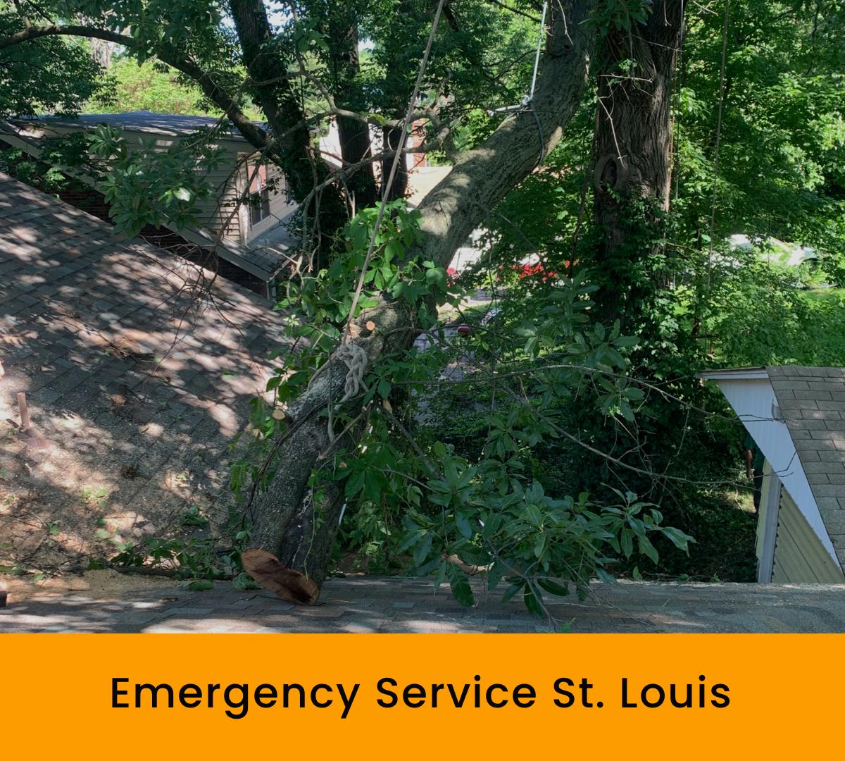 Emergency Service St. Louis
