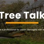 downed tree removal st louis